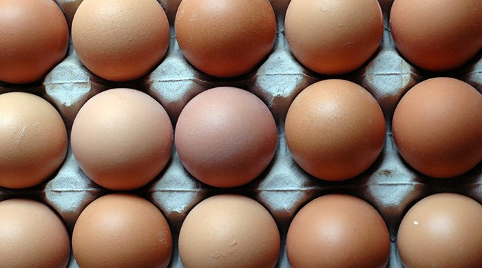 an egg like the ones in this try are high in protein