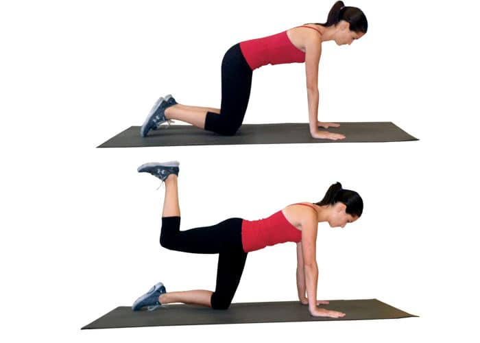 Quadruped-hip-extension2