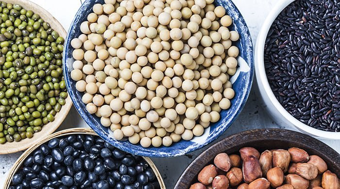 Soy beans and other pulses