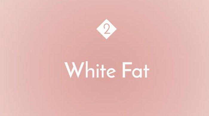 6-types-of-body-fa_-white