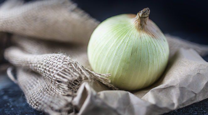 a close-up of an onion on cloth