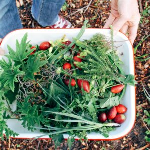 Wild Food Foraging Is The Healthy Trend Taking Over The Food Scene